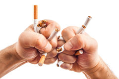 Human hands heatedly breaking cigarettes Royalty Free Stock Photos