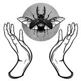 Human hands hold a fantastic bug. Symbols of the moon. Mysticism, esoteric, sorcery. Royalty Free Stock Photography