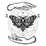 Human hands hold a moth the Dead Head. Alchemical circle. Symbols of the moon. Mysticism, esoteric, sorcery. Coloring book. Vector illustration isolated on a Stock Photo