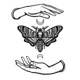 Human hands hold a moth the Dead Head. Symbols of the moon. Mysticism, esoteric, sorcery. Royalty Free Stock Photos