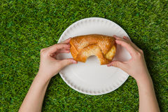 Human hands holding bun over empty plate on grass Royalty Free Stock Photography