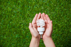 Human hands holding energy saving lamp close up Royalty Free Stock Image