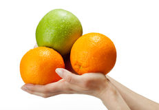 Human hands holding fresh fruits stock images