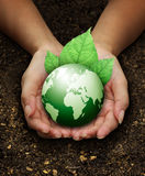 Human hands holding green on Fertilizer soil. Human hands holding green earth with a leaf on Fertilizer soil background Royalty Free Stock Image