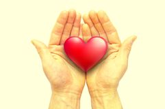Human hands holding heart. Human hands holding red heart royalty free stock images