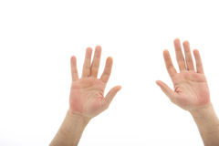Human hands isolated on white Royalty Free Stock Photography