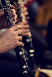 Human hands playing a clarinet Royalty Free Stock Photo