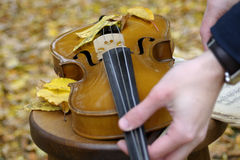 Human hands preparing violin. Adult preparing for classical concert with violin in fall season Stock Photography