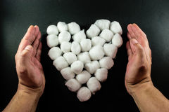 Human Hands Protect a Cotton Bud Heart Royalty Free Stock Photography