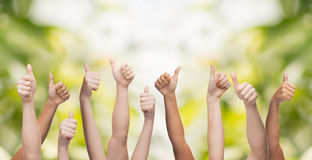 Human hands showing thumbs up Royalty Free Stock Photo