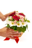 Human hands standing a pot with flowers Stock Image