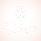 Human hands take care of flower. Hand draw. Symbol of nature Royalty Free Stock Images