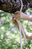 Human hands tie a rop in knot at green forest. Human hands tie a rop in knot at green forest Royalty Free Stock Images