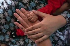 Human hands. Stock Image