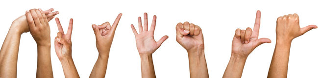 Human hands on a white background Stock Photo