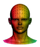 Human colorful head. Vector illustration Stock Images
