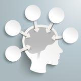 Human Head Brain 5 Circles Arrows Infographic Royalty Free Stock Photo