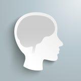 Human Head Brain Royalty Free Stock Image