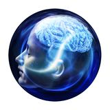 Human head and brain, Neural connections concept. 3D illustration Stock Photography