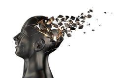 Free Human Head Breaks Into Pieces Stock Photo - 74586990