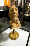 Human head at the exhibition Stock Photos