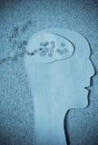 Human head with gears Stock Image