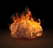 Human head sculpture in flames Royalty Free Stock Images