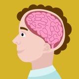 Human head in section cartoon vector illustration Stock Photography