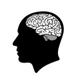 Human head silhouette with brain illustration Stock Photos