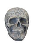 Human Head Skull. Stock Image
