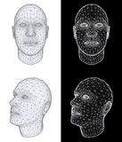 Human head. Vector Illustration Royalty Free Stock Photo
