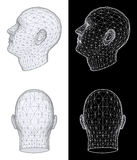 Human head. Vector Illustration Stock Photography