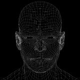 Human head. Wire frame render Stock Photos