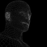 Human head. Wire frame render Royalty Free Stock Photography