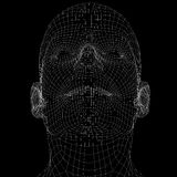 Human head. Wire frame render Stock Image