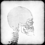 Human Head X-Ray concept Royalty Free Stock Images
