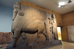 Human Headed Winged Lions and reliefs from Nimrud with the Balaw. LONDON - MAY 15 2015:Human Headed Winged Lions and reliefs from Nimrud with the Balawat Gates Royalty Free Stock Image