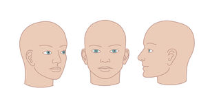 Human heads full-face, half-face and three-quarter. Vector silho Royalty Free Stock Photos