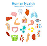 Human Health Infographic Elements Objects. Royalty Free Stock Image