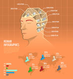 Human health, knowledge infographic with icons inside the head.  Stock Photo