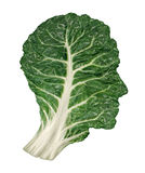 Human Healthy Diet. Concept with a dark green leafy kale or collard leaf in the shape of a head as a symbol of fresh vegetable eating and intelligent dieting Royalty Free Stock Images