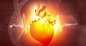 Human heart anatomy with dna. Abstract background. 3d illustration Royalty Free Stock Image