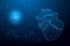 Human heart anatomy form lines and triangles, point connecting network on blue background. Health concept stock illustration
