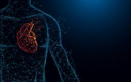 Human heart anatomy form lines and triangles, point connecting network on blue background. Illustration vector Stock Images