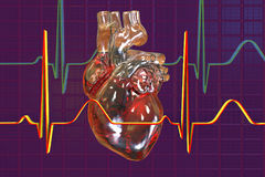 Human heart on background with ECG. 3D illustration Royalty Free Stock Photo