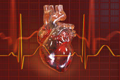 Human heart on background with ECG. 3D illustration Stock Photography
