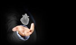 Human heart stock photos
