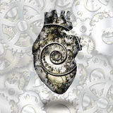 Human heart gears and time Stock Images