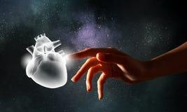 Human heart health royalty free stock photos