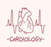 Medical symbol of cardiology. vector. Human heart and heartbeat thin line as medical symbol of cardiology. ekg heart pulse chart. vector Royalty Free Stock Photo